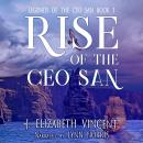 Rise of the Ceo San Audiobook