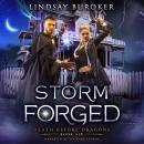 Storm Forged Audiobook