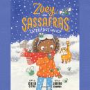Zoey and Sassafras: Caterflies and Ice Audiobook