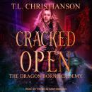 Cracked Open Audiobook
