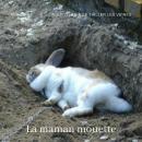 La maman mouette Audiobook