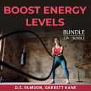 Boost Energy Levels Bundle, 2 in 1 bundle: Energy Speaks and The Energy Formula Audiobook