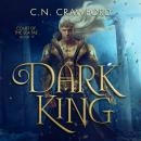 Dark King Audiobook