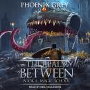 The Realm Between: Magic School Audiobook