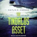 The Tindalos Asset Audiobook