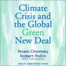 The Climate Crisis and the Global Green New Deal: The Political Economy of Saving the Planet Audiobook