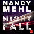 Night Fall Audiobook