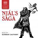 Njál's Saga Audiobook