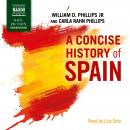 A Concise History of Spain Audiobook