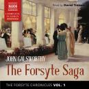 The Forsyte Chronicles, Vol. 1: The Forsyte Saga Audiobook