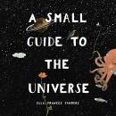 A Small Guide to the Universe Audiobook