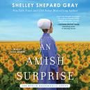 An Amish Surprise Audiobook