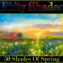 Fifty Shades of Spring Audiobook