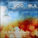 1 Peter Audiobook