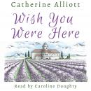 Wish You Were Here Audiobook
