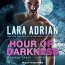 Hour of Darkness Audiobook