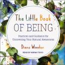 The Little Book of Being: Practices and Guidance for Uncovering Your Natural Awareness Audiobook