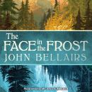 The Face in the Frost Audiobook