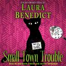 Small Town Trouble Audiobook