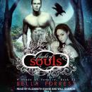 A Shade of Vampire 23: A Flight of Souls Audiobook