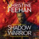 Shadow Warrior Audiobook