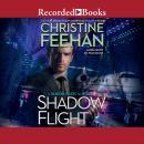 Shadow Flight Audiobook