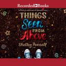 Things Seen From Above Audiobook