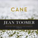 Cane Audiobook