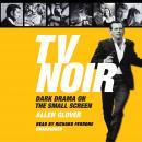 TV Noir: Dark Drama on the Small Screen Audiobook