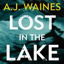 Lost in the Lake, A J Waines