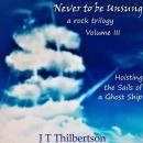 Never to be Unsung, a rock trilogy, Vol 3, Hoisting the Sails of a Ghost Ship Audiobook