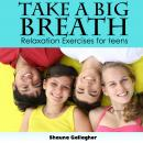 Take A Big Breath For Teens Audiobook