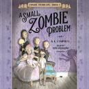 A Small Zombie Problem Audiobook