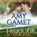 Treasure on Moon Lake Audiobook