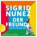 Der Freund Audiobook