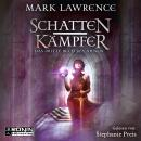 Schattenkämpfer - Das dritte Buch des Ahnen - Das Buch des Ahnen, Band 3 (ungekürzt) Audiobook