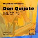 Don Quijote, Buch 1 (Ungekürzt) Audiobook