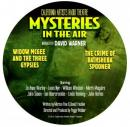 Widow Magee and the Three Gypsies - A Vermont Fandango Audiobook