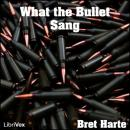 What the Bullet Sang, Bret Harte
