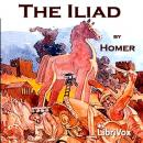 The Iliad (Pope Translation)