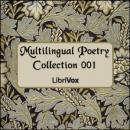 Multilingual Poetry Collection 001, Various Authors