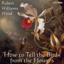 How to Tell the Birds from the Flowers, Robert Williams Wood