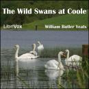 Wild Swans at Coole, William Butler Yeats