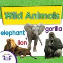 Wild Animals, Twin Sisters Productions
