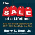 The Sale of a Lifetime :How the Great Bubble Burst of 2017-2019 Can Make You Rich